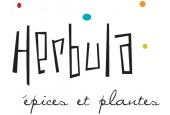 Herbula