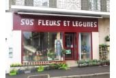 SOS FLEUR ET LEGUME